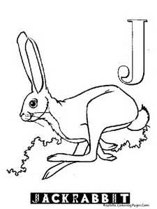 Jack Rabbit Coloring Pages Letter J