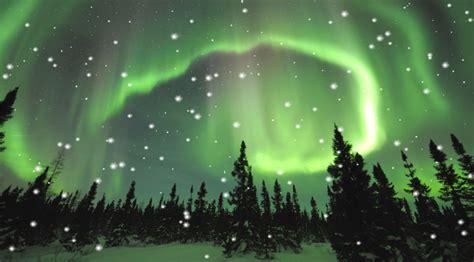Northern Lights Animated Wallpaper - borealis animated wallpaper desktopanimated