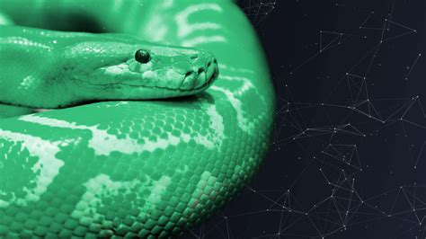 python tutorials learn python programming  data science