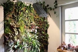 Pflanzen An Der Wand : pflanzen wand free jardin vertical biomax with pflanzen wand finest pflanzen in der kche wand ~ Markanthonyermac.com Haus und Dekorationen