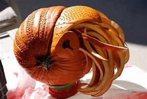 The, Most, Perfect, Pumpkins, We, U0026, 39, Ve, Ever, Seen