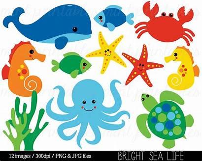 Sea Clipart Animal Under Clip Creatures