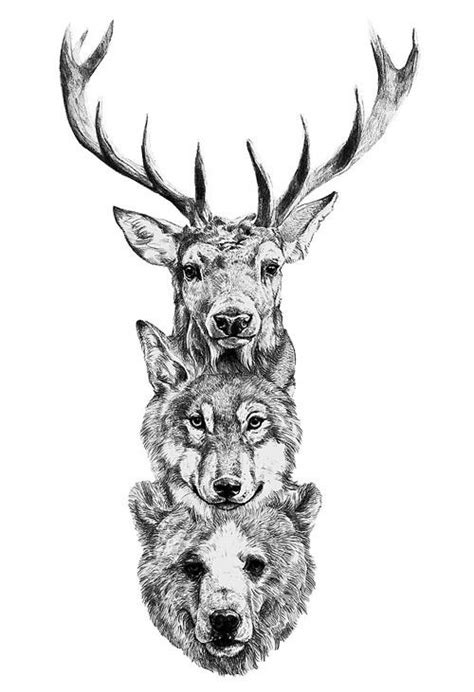 Tattoos Bear Wolf Deer Picture Drawing Totem Tattoo