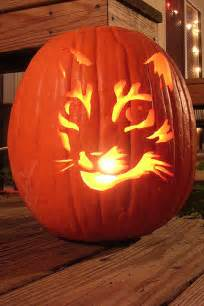 is pumpkin for cats 13 cat pumpkin carving ideas for catster
