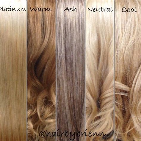 Hair Shade Guide by 17 Best Ideas About Color Chart On