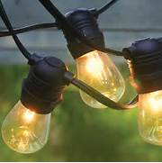 Black 54 39 Commercial Grade Heavy Duty Outdoor String Lights W 24 Outdoor Indoor Edison Style String Lights Commercial Grade Heavy White 56 39 Commercial Grade Heavy Duty Outdoor String Lights W 24 Black 54 39 Commercial Grade Heavy Duty Outdoor String Lights W 24