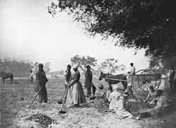 American Civil War Photos  African American Slavery Picures and Images  Slavery In The South