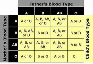 Positive And Negative Blood Type Chart Deepak Blood Groups Types Explained