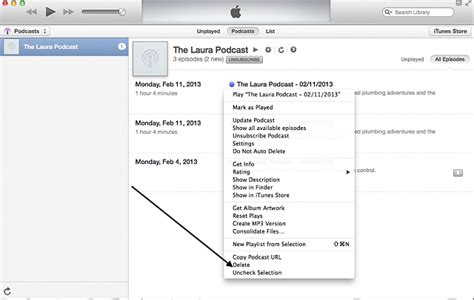 how to delete podcasts from iphone delete outdated podcast from itunes iphone ipod