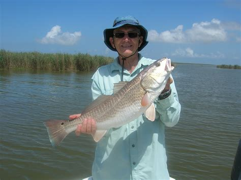 florida fishing saltwater collier county grant license need redfish extension sea tackle