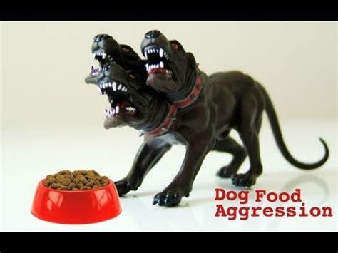 dog food aggression youtube
