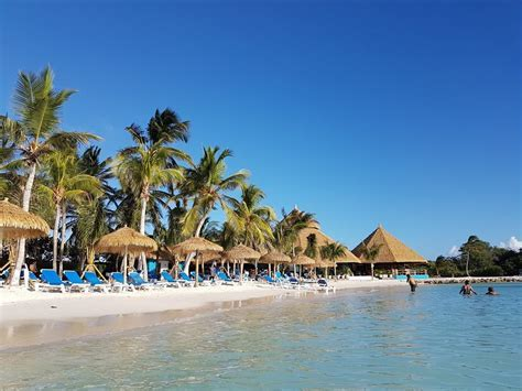 Renaissance Aruba Beach Resort & Casino   timeshare users
