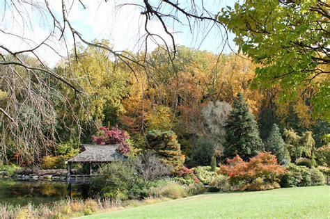 garden in fall maryland virginia d c garden housecalls
