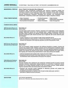 Resume Template Accountant Example Business Sales Resume Free Sample L Business