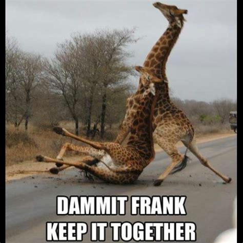 funny drunk people pictures topbestpicscom