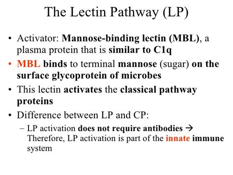 what is the difference between c7 and c9 light bulbs pharm immuno3 4 q innate immunity complement