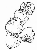 Strawberry Coloring Pages Berries Fruits sketch template