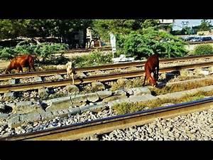 Live Accident Caught in CCTV footage At Nalasopara | Doovi