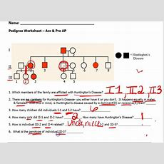 Pedigree Worksheet Youtube