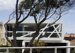 Tree Branches For Sale Australia