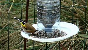 Abreuvoir A Oiseaux Pour Jardin : silo pour graines d 39 oiseaux youtube ~ Melissatoandfro.com Idées de Décoration