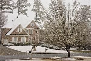 Magnolie Blüht Nicht : ist die magnolie winterhart diese sorten vertragen frost ~ Buech-reservation.com Haus und Dekorationen