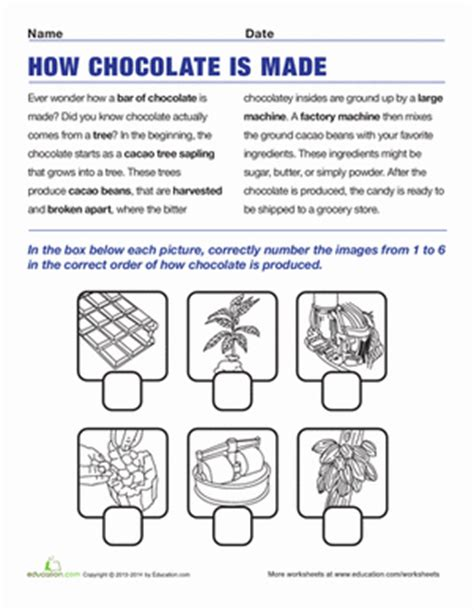 how chocolate is made worksheet education