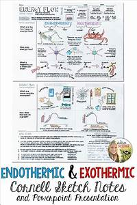 Endothermic And Exothermic Reaction Worksheet