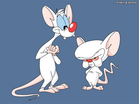 However, while they had their own series, they still sporadically appeared in animaniacs. Pinky and The Brain (characters) - Looney Tunes Wiki
