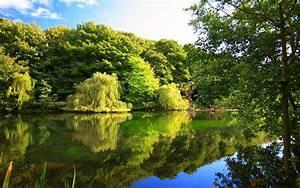 Nature Beautiful Images
