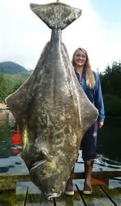 Best Halibut Fishing Alaska