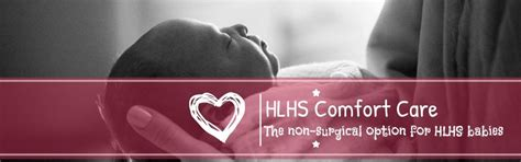 what is comfort care cropped cropped hlhs comfort care logo 2 jpg hlhs