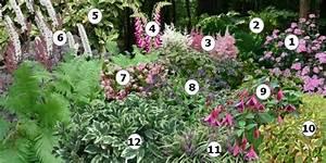 Ouvrir Un Capot De L Exterieur : cr er un massif de fleurs l 39 ombre amenagement exterieur pinterest ~ Medecine-chirurgie-esthetiques.com Avis de Voitures