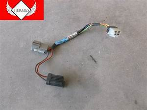 Ford Expedition Wire Harnes