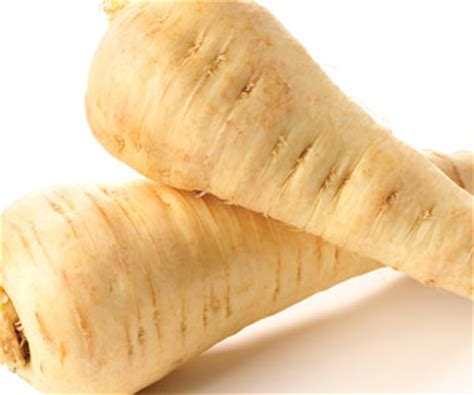 Why Parsnip Is Good For Pregnant Women  Parsnip Recipes