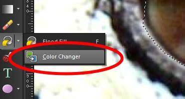 using the color changer tool in corel paintshop pro