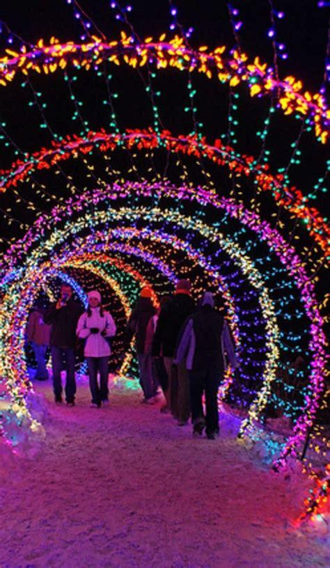 Cool Christmas Light Ideas Fishwolfeboro