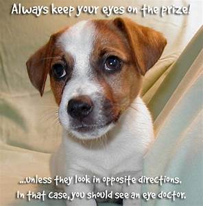 Puppies Quotes Cute Puppy Pictures Of With Sayings - Litle ...
