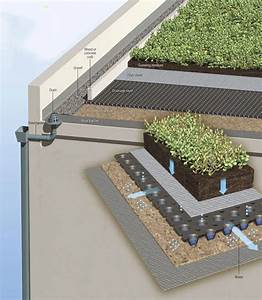 Intro To Green Roofs  Part 1 Of 3  What Is A Green Roof