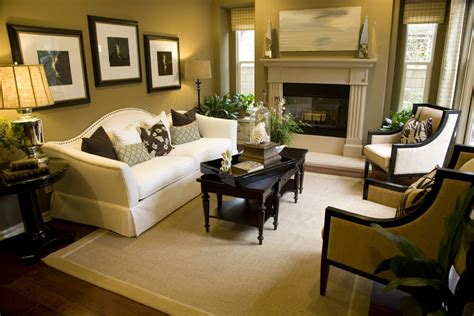 cozy living room tips and ideas for small big rooms on
