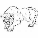 Panther Angry Coloring Pages Printable Categories sketch template