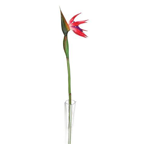 Large Bird Of Paradise Tropical Flower  Artificial Silk Latex Flowers Long Stem Ebay