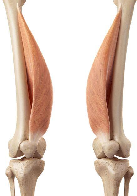 knieschmerzen schmerzen im knie behandlung eim praxis