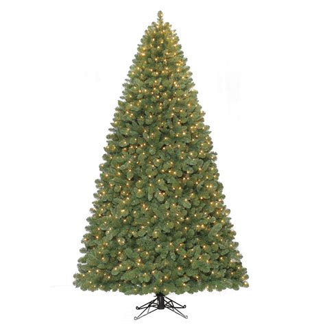100 of the best christmas trees