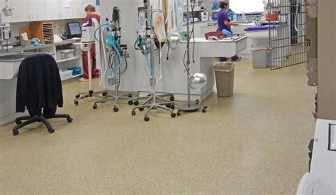veterinary pet floor resists odors stains germs - Epoxy Flooring Veterinary