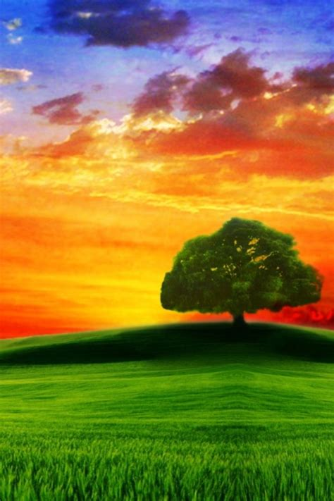 Wallpaperscataloguecom  Drawn Hd, Tree On The Hill At