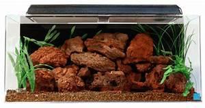 Seaclear 50 Gallon Acrylic Aquarium Review