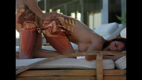 Nude Women Vagina Sex Xray Video Adult Image