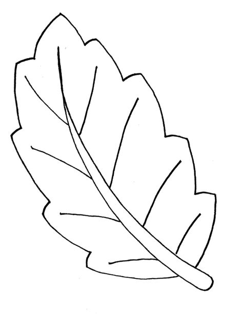 leaf shapes  print az coloring pages