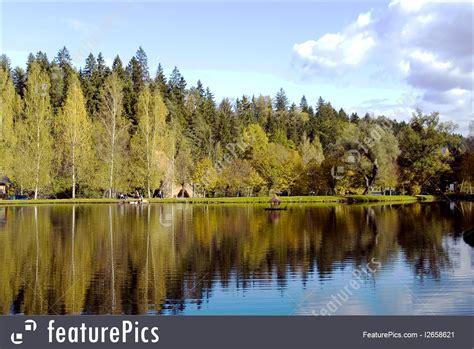 photo  beautiful forest lake